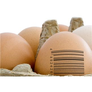 eggwithbarcode-resized-600